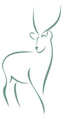 Clip art of an elk.